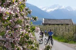Adige Valley Cycle Path – Cycling in Meran